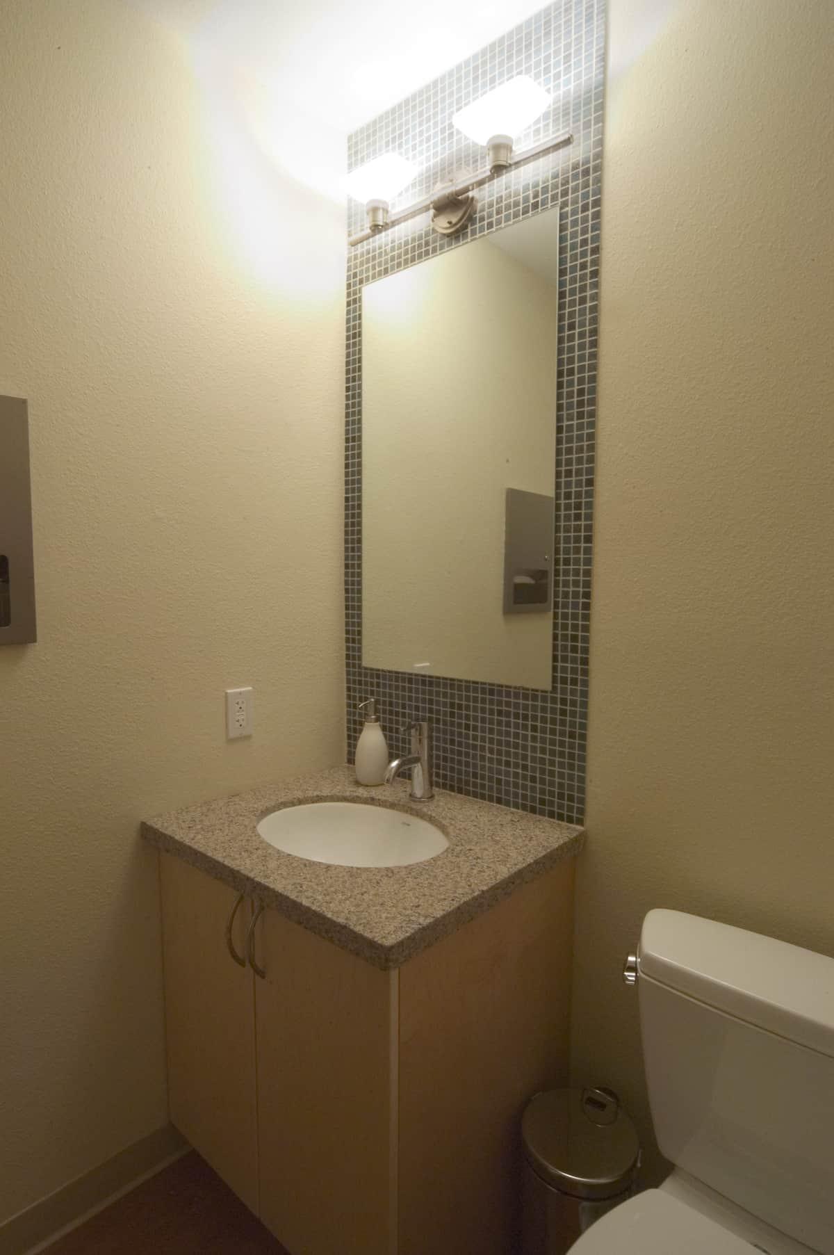 stylish customer's toilet