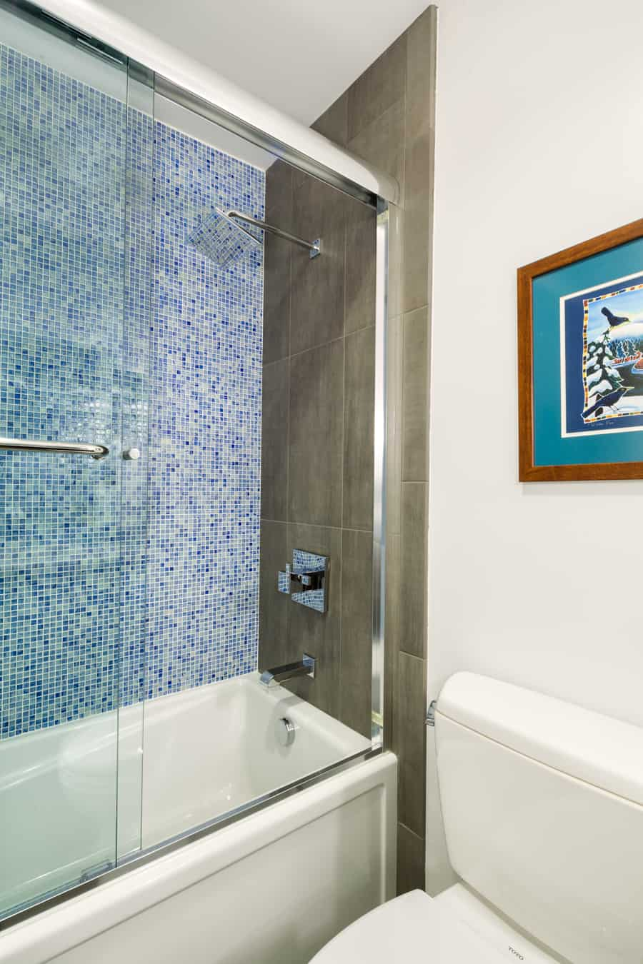 Melton Design Build- Hall Bathroom Shower